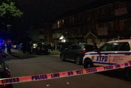 5 stabbed at New York 'birth tourism' center