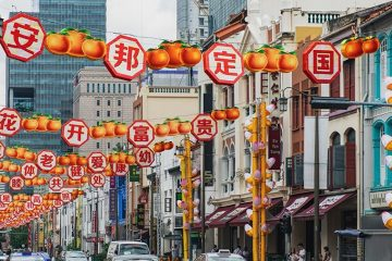 China and Singapore have reached a deal to upgrade their bilateral free trade agreement (FTA), bringing an end to three years of back-and-forth negotiations. The development, announced in statements by China's Ministry of Commerce and Singapore's Ministry of Trade and Industry on November 5, will expand the scope of the…
